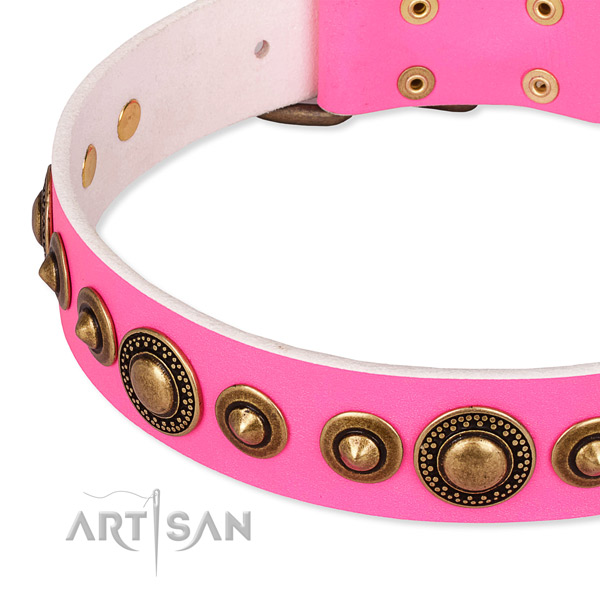 Best quality full grain leather dog collar handmade for your attractive dog