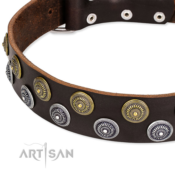 Easy wearing studded dog collar of fine quality natural leather