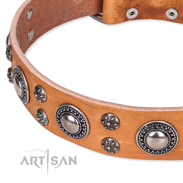 Stylish walking decorated dog collar of top quality full grain leather