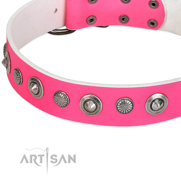 Genuine leather collar with durable D-ring for your stylish doggie