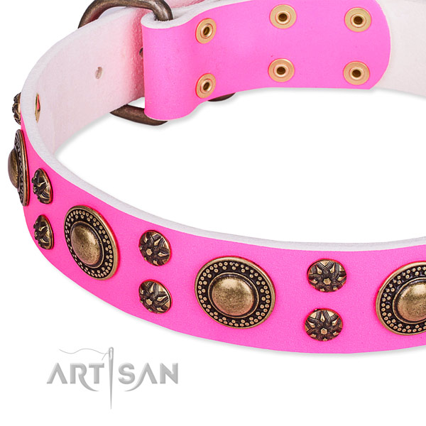 Everyday walking decorated dog collar of fine quality genuine leather