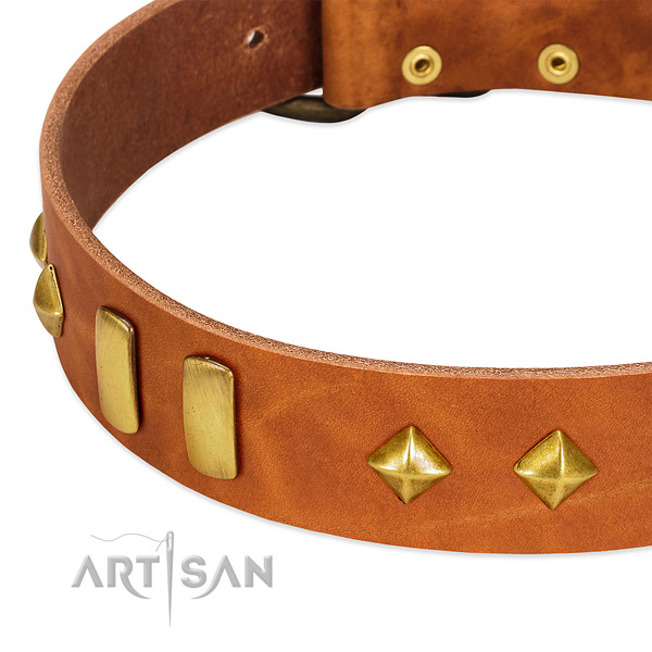 Easy wearing full grain genuine leather dog collar with amazing studs