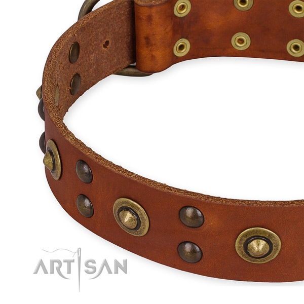 Genuine leather collar with rust-proof traditional buckle for your handsome pet
