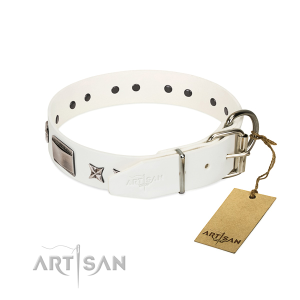 Adorned collar of full grain genuine leather for your stylish doggie