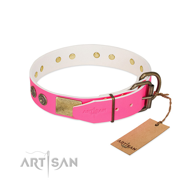 Rust resistant buckle on full grain natural leather collar for walking your doggie