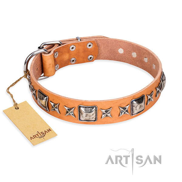 Everyday use dog collar of fine quality full grain leather with decorations