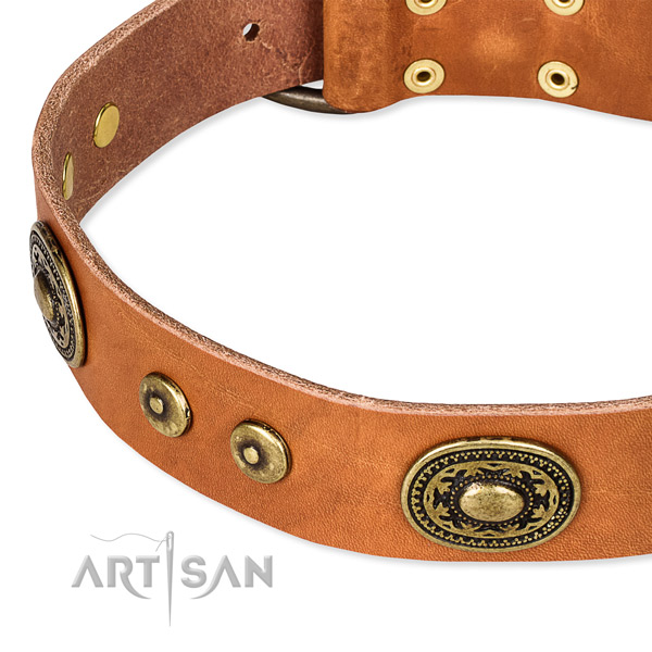Full grain natural leather dog collar made of soft material with adornments