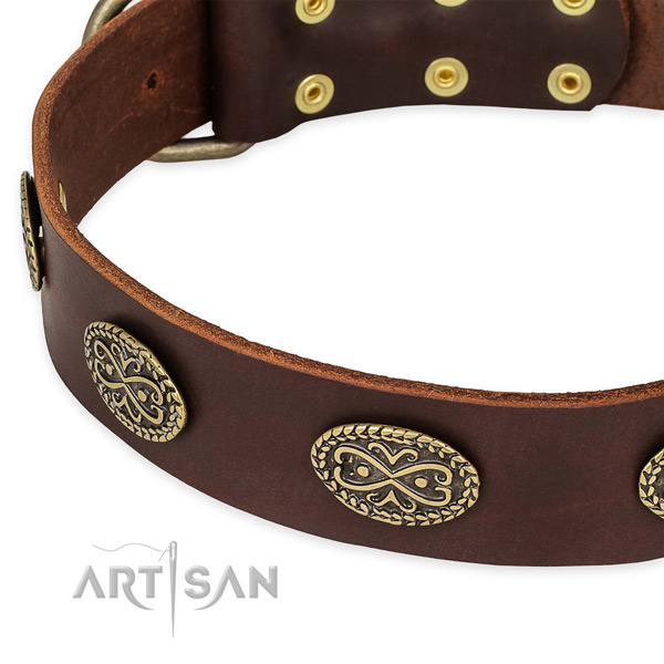 Exceptional genuine leather collar for your stylish canine