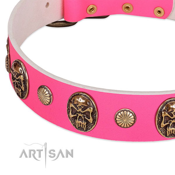 Rust-proof embellishments on full grain natural leather dog collar for your pet