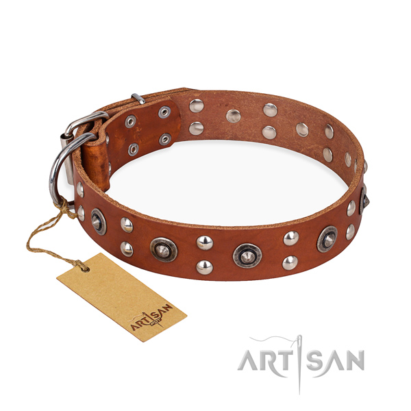 Daily use designer dog collar with rust-proof fittings
