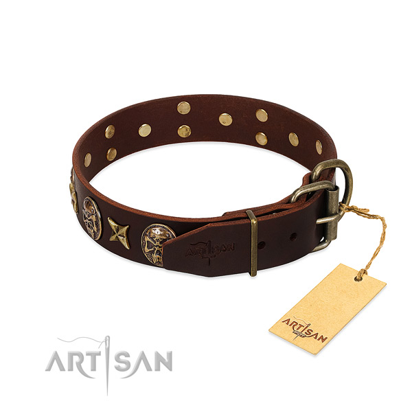 Full grain genuine leather dog collar with durable fittings and embellishments