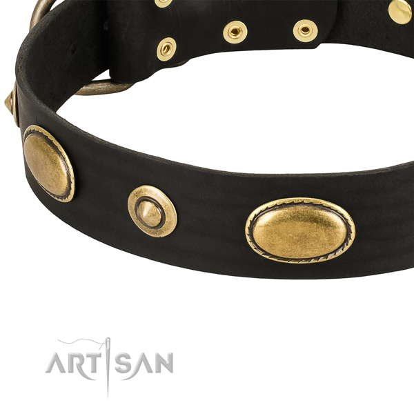 Rust resistant embellishments on full grain natural leather dog collar for your four-legged friend