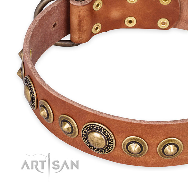 Reliable full grain genuine leather dog collar crafted for your handsome canine