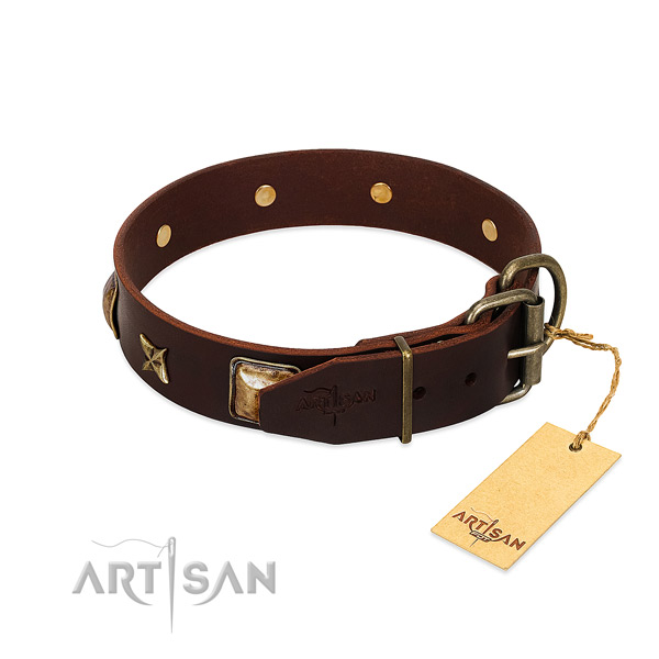 Leather dog collar with strong traditional buckle and adornments