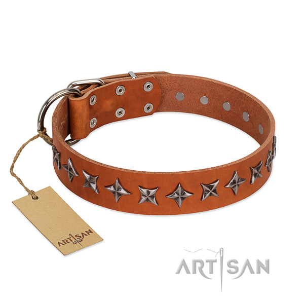 Comfortable wearing dog collar of reliable natural leather with adornments