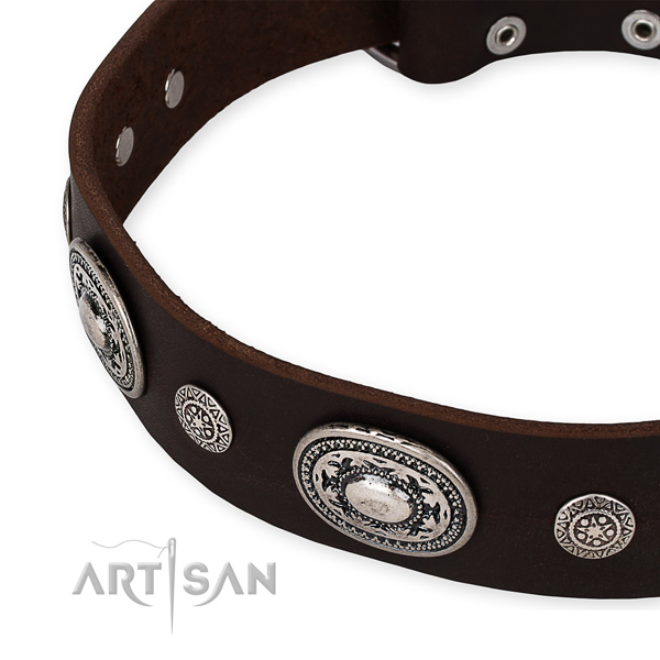 Top rate genuine leather dog collar crafted for your impressive doggie