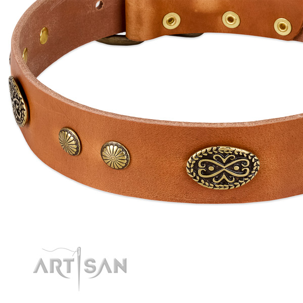 Reliable studs on full grain natural leather dog collar for your dog