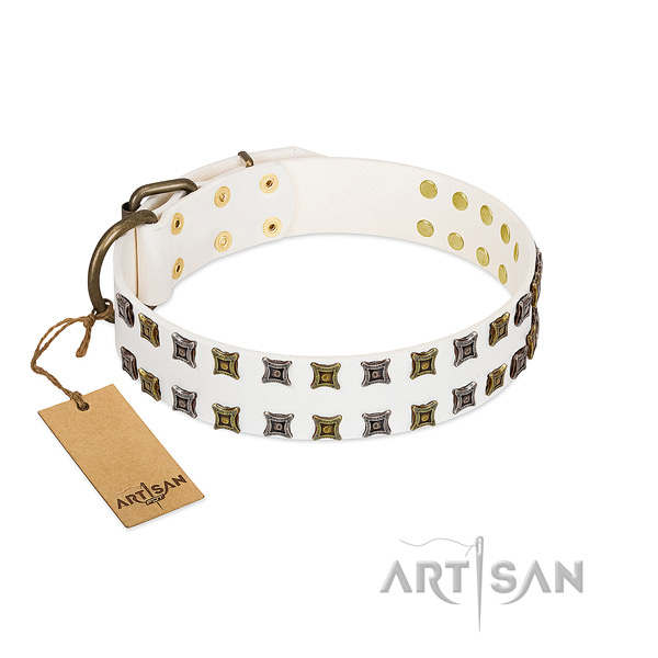 Full grain natural leather collar with exceptional studs for your pet
