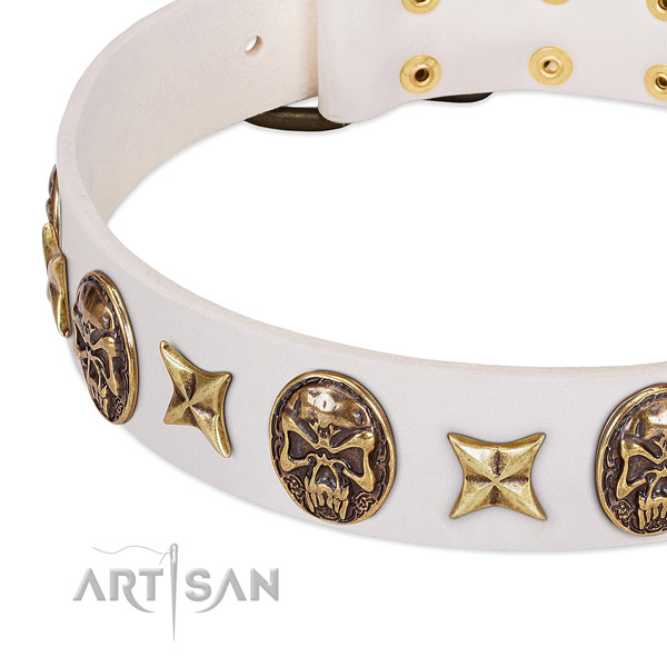Full grain natural leather dog collar with reliable traditional buckle