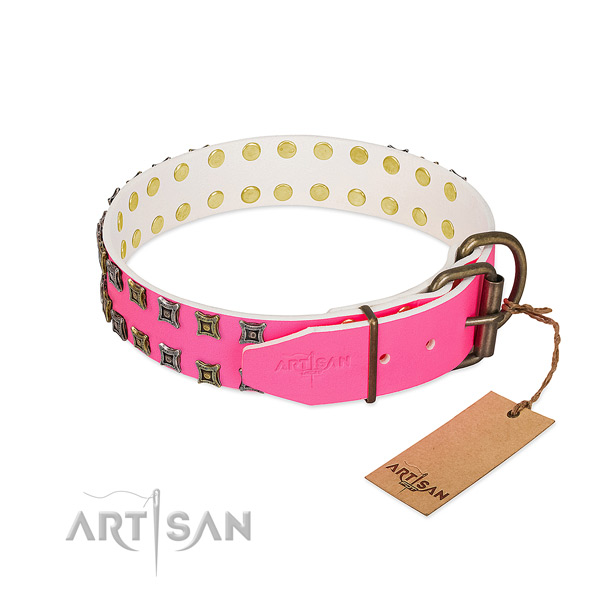 Full grain natural leather collar with extraordinary embellishments for your four-legged friend
