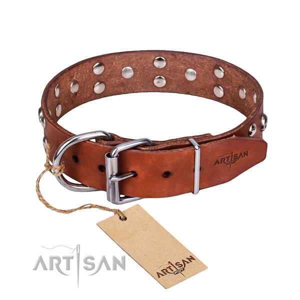 Handy use dog collar of high quality full grain natural leather with embellishments