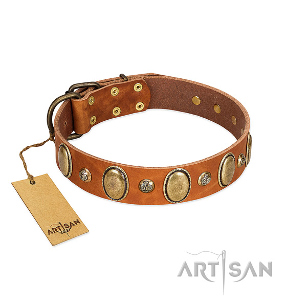 Natural leather dog collar of high quality material with remarkable embellishments