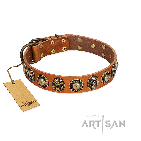 Easy wearing natural leather dog collar for stylish walking your pet