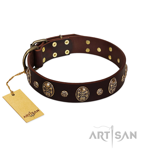 Fashionable full grain genuine leather collar for your four-legged friend