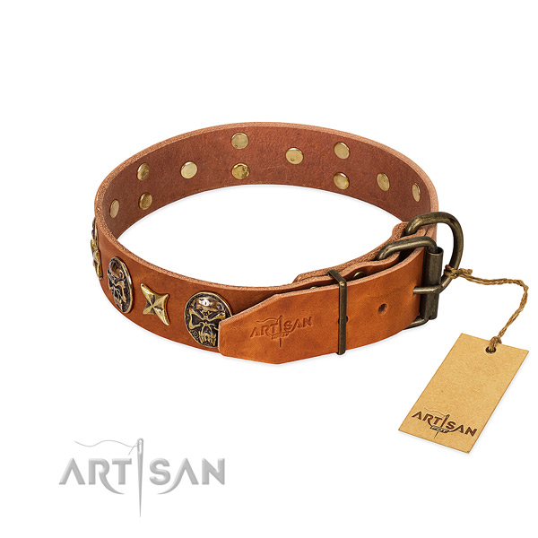 Full grain leather dog collar with rust resistant traditional buckle and embellishments