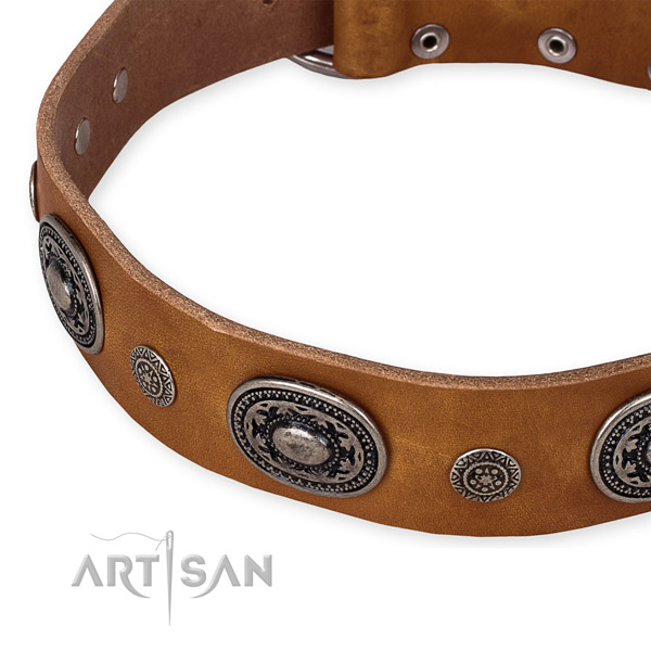 Quality genuine leather dog collar handmade for your beautiful canine