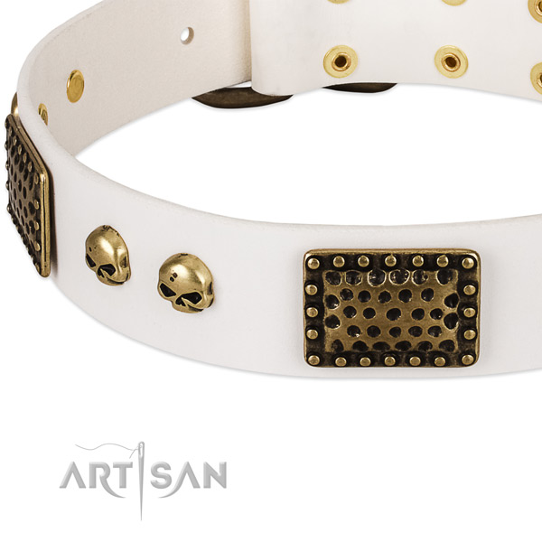 Rust resistant decorations on full grain natural leather dog collar for your four-legged friend