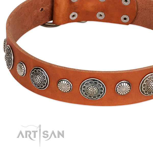 Genuine leather collar with reliable D-ring for your attractive pet