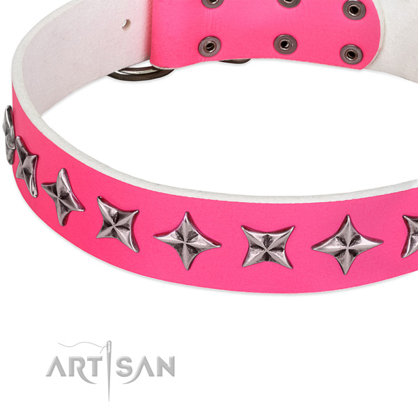 Daily use studded dog collar of top notch full grain leather