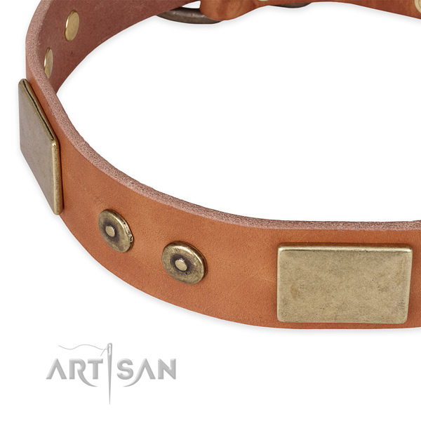 Corrosion proof traditional buckle on full grain leather dog collar for your canine