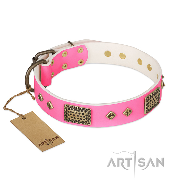 Easy adjustable genuine leather dog collar for daily walking your pet