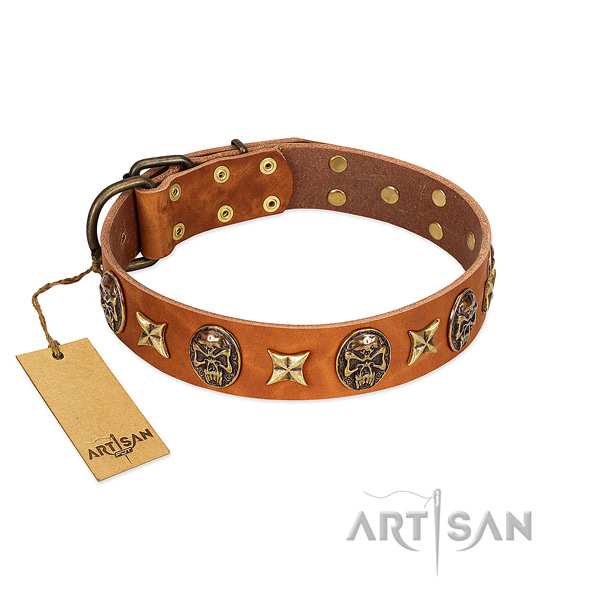 Top quality genuine leather collar for your canine