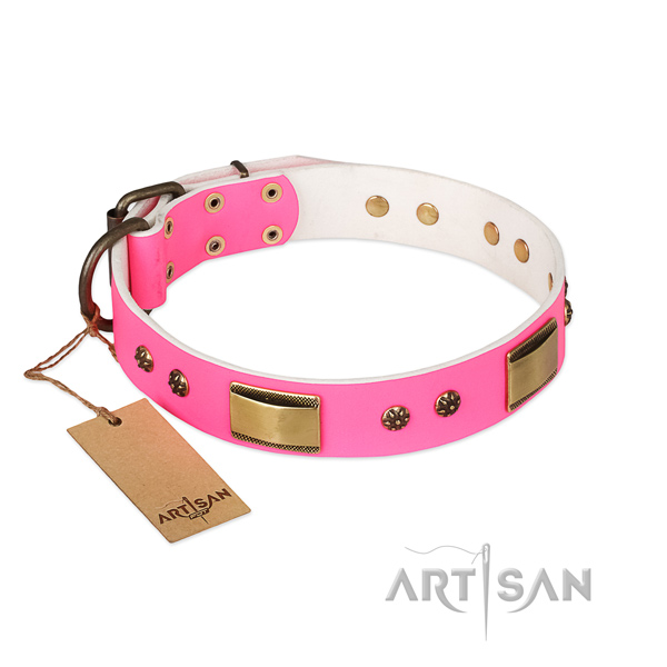 Easy to adjust full grain genuine leather collar for your dog