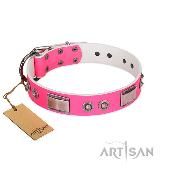 Exceptional dog collar of full grain leather with embellishments