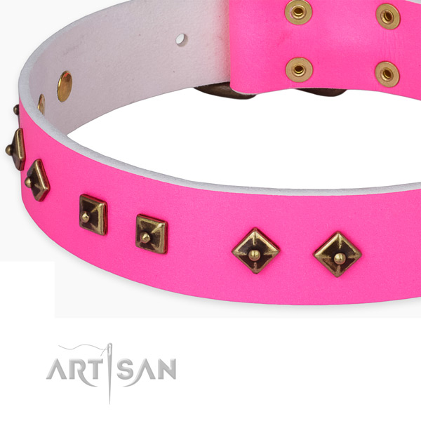 Top notch natural leather collar for your impressive pet