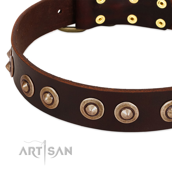 Corrosion proof decorations on leather dog collar for your canine