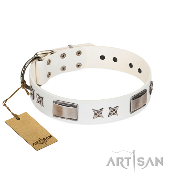 Top notch dog collar of full grain genuine leather
