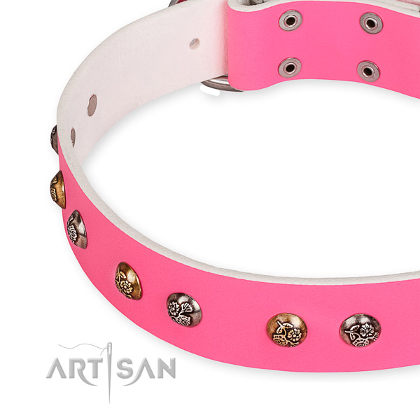 Full grain genuine leather dog collar with fashionable strong embellishments