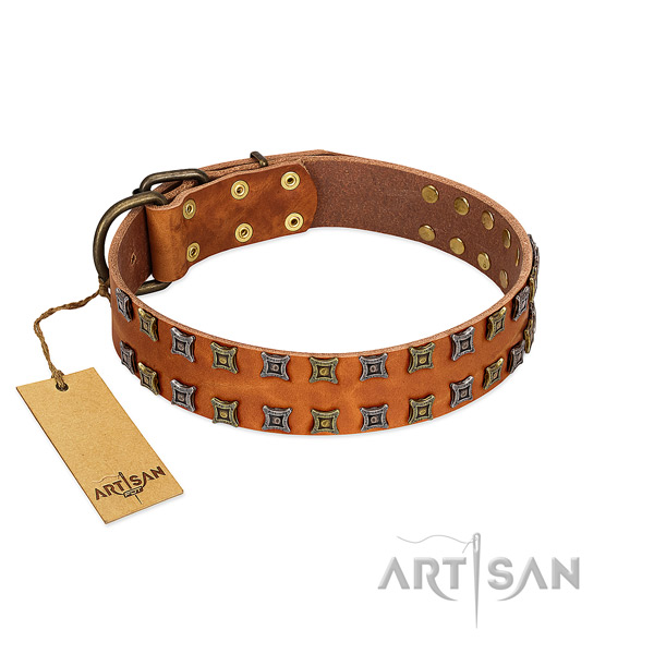 Top rate full grain leather dog collar with embellishments for your doggie