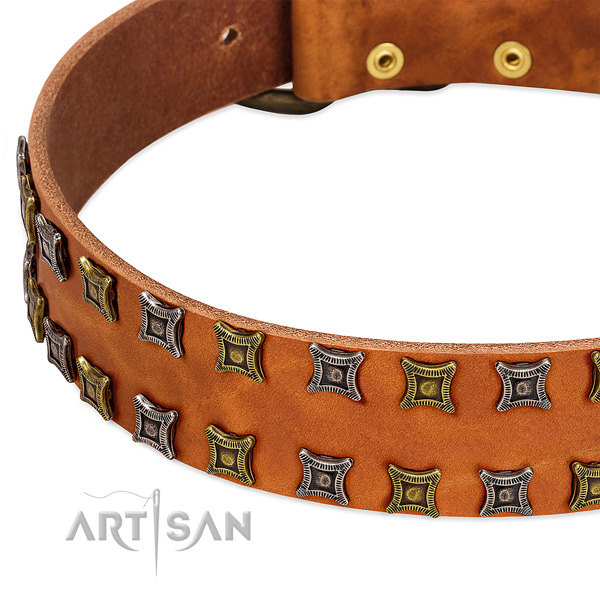 Top rate natural leather dog collar for your attractive four-legged friend