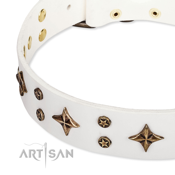 Everyday use decorated dog collar of strong full grain leather