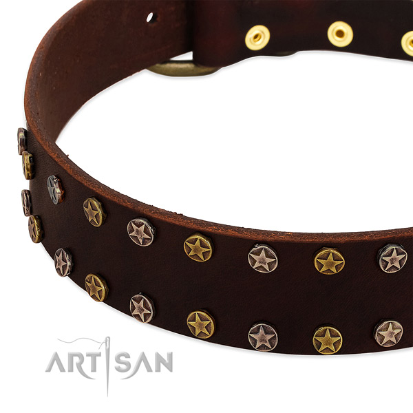Stylish walking genuine leather dog collar with amazing embellishments