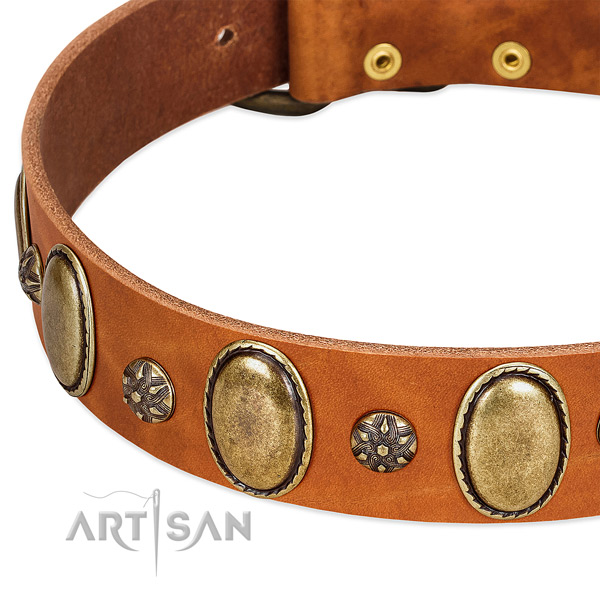 Fancy walking best quality full grain genuine leather dog collar