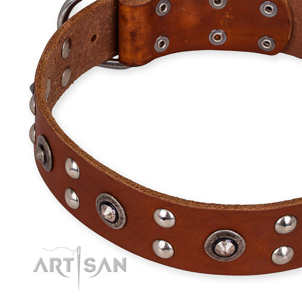 Genuine leather collar with corrosion resistant buckle for your attractive canine