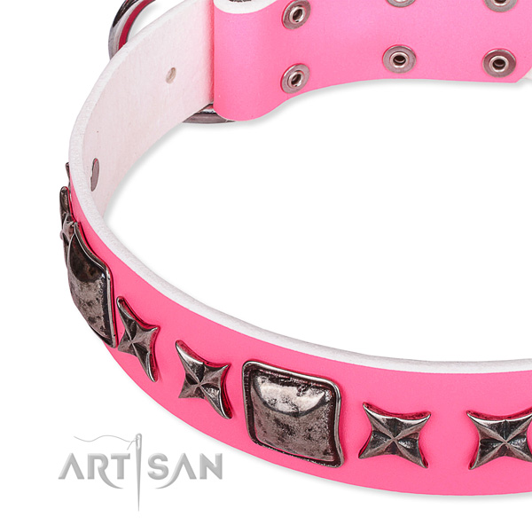 Everyday walking decorated dog collar of reliable full grain genuine leather