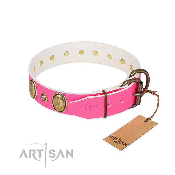 Stylish walking top notch full grain leather dog collar
